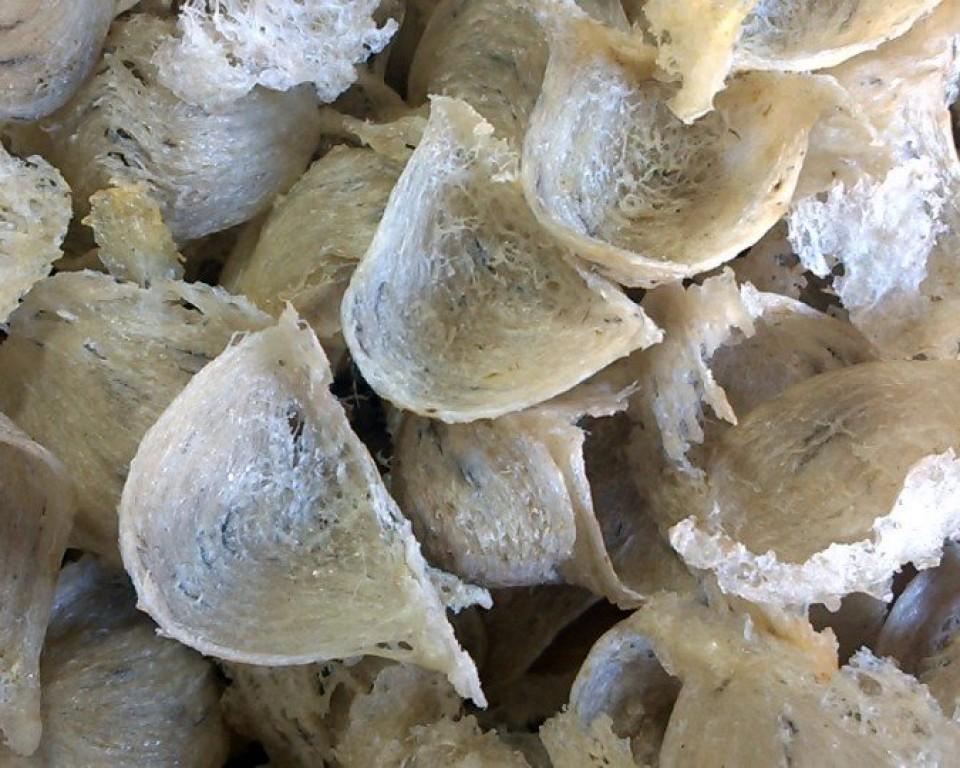 YẾN SÀO món ăn ngon thượng hạn ở Cù Lao Chàm