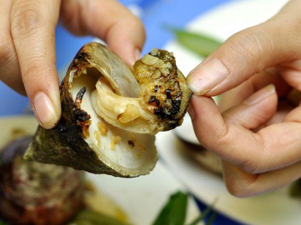Ốc vú nàng thuộc top món ăn ngon Cù Lao Chàm bạn nên thử